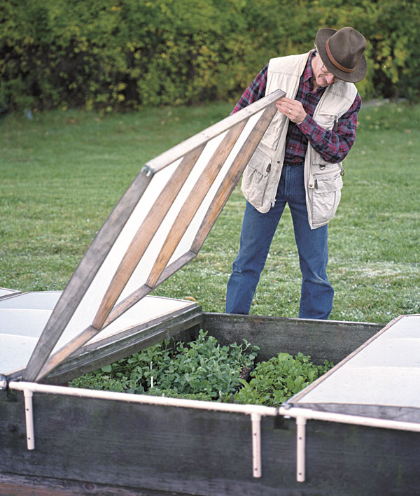 The Vegetable Gardener Cold Frame Design