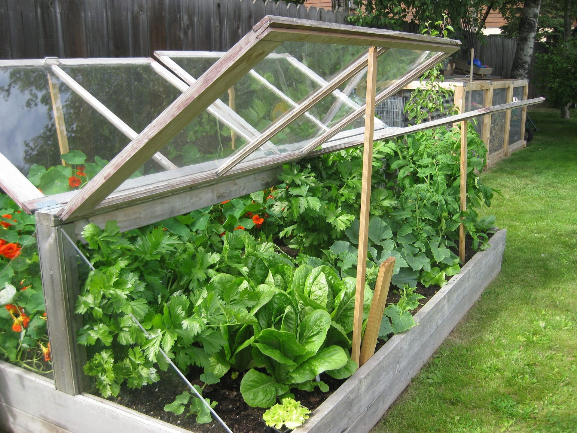 10 Easy Diy Cold Frame Plans To Extend