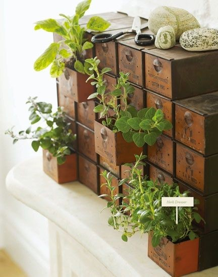 Container mound garden idea