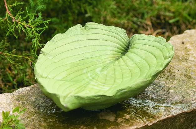 Leaf Water Platter Bird Bath Idea