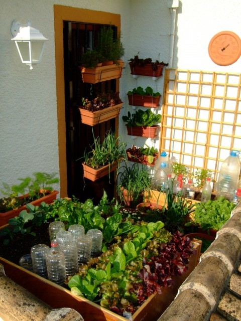 Small space gardening 20 clever ideas to grow in a limited space the self sufficient living - Landscaping for small spaces gallery ...