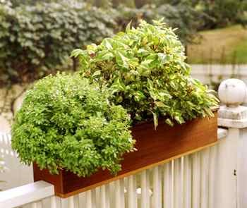 Planter Box-On-Railing Garden Idea