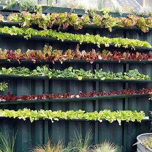 cinder block stacked garden is another way to pursue your dream of urban gardening