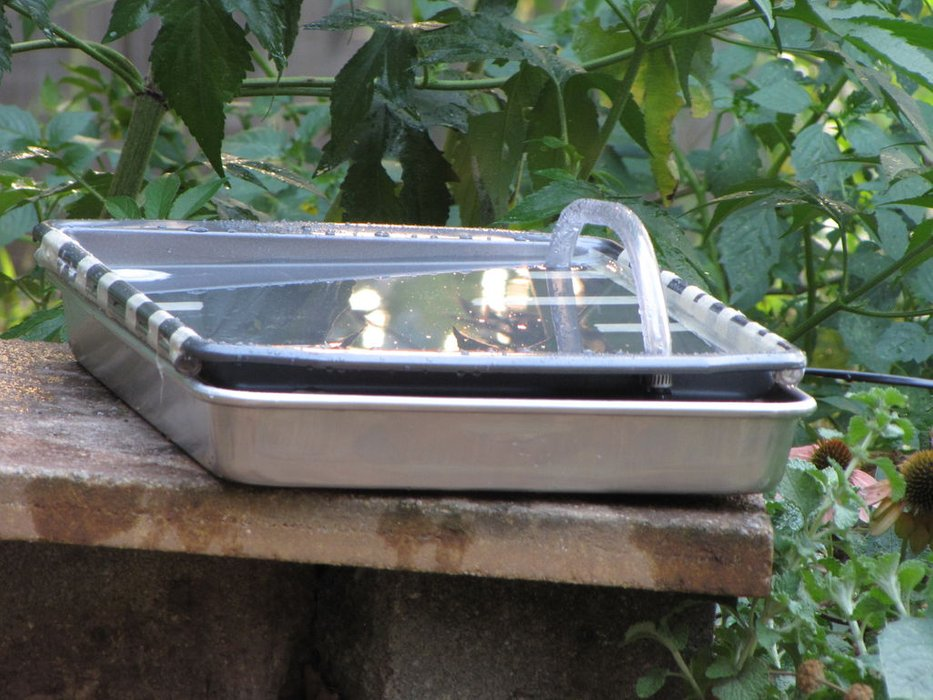 Solar Powered Hummingbird Bath