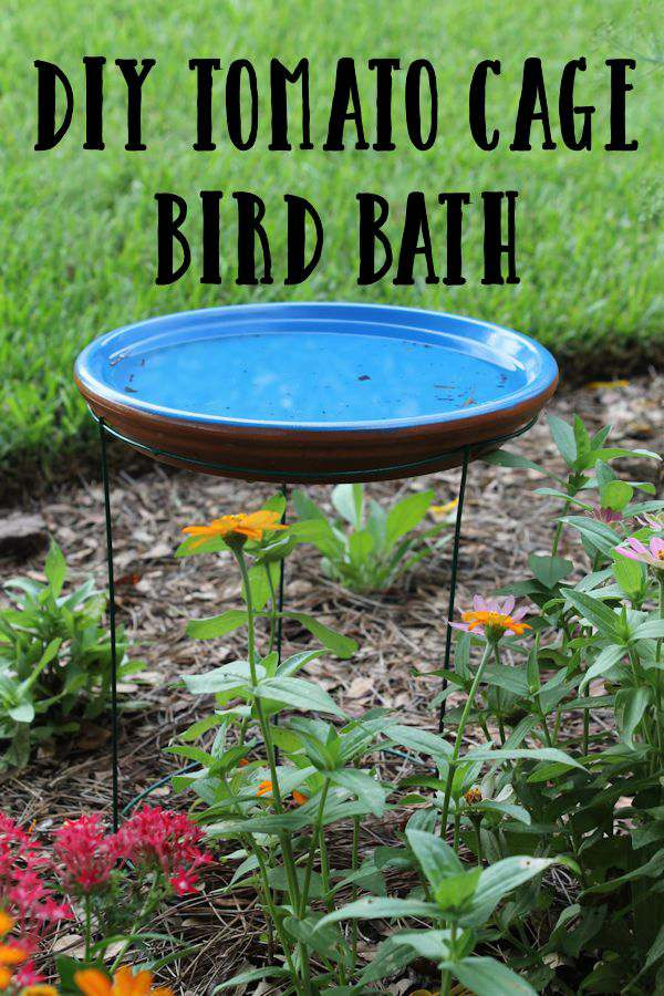 Tomato Cage Homemade Bird Bath