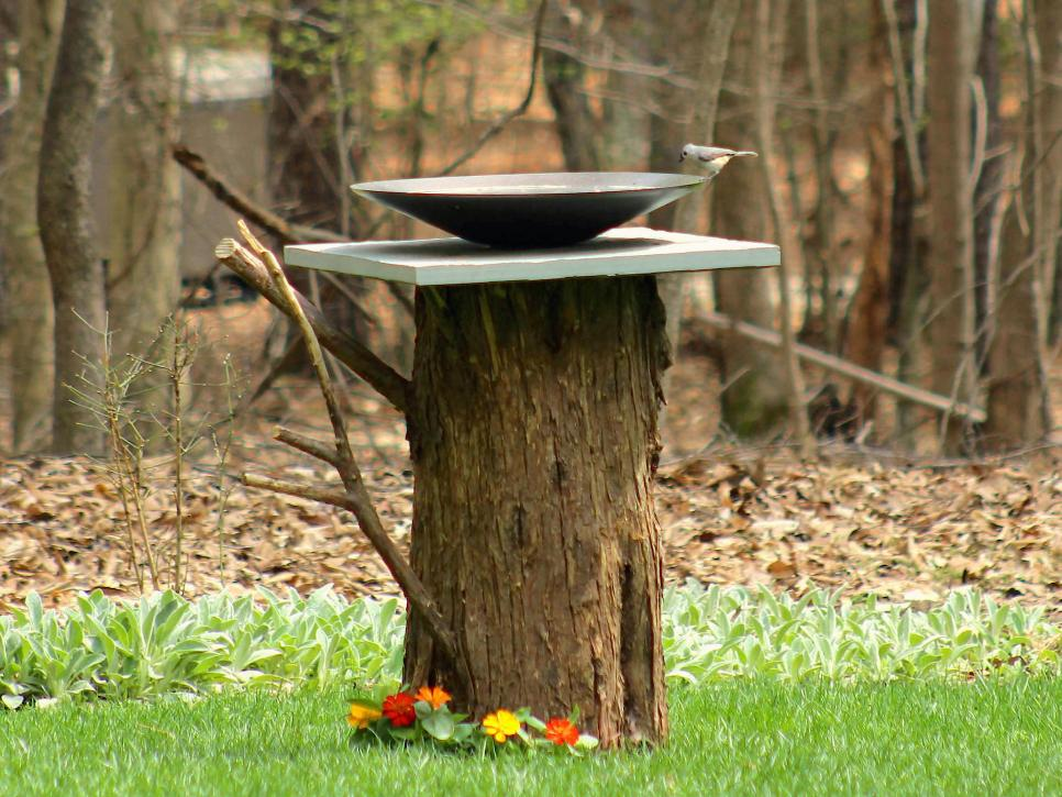 Tree Stump DIY Bird Bath