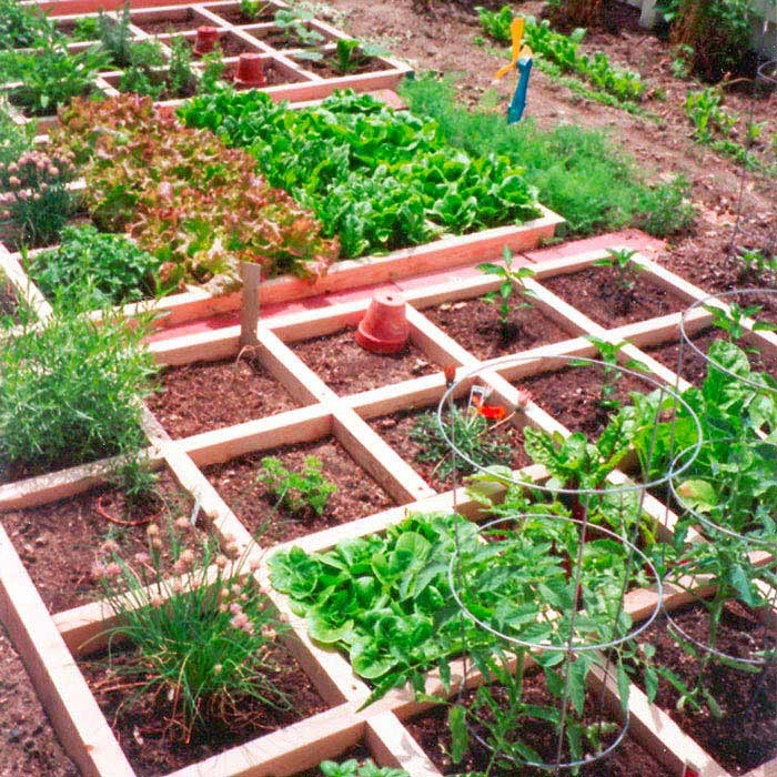 Small space gardening 20 clever ideas to grow in a for Square foot garden designs