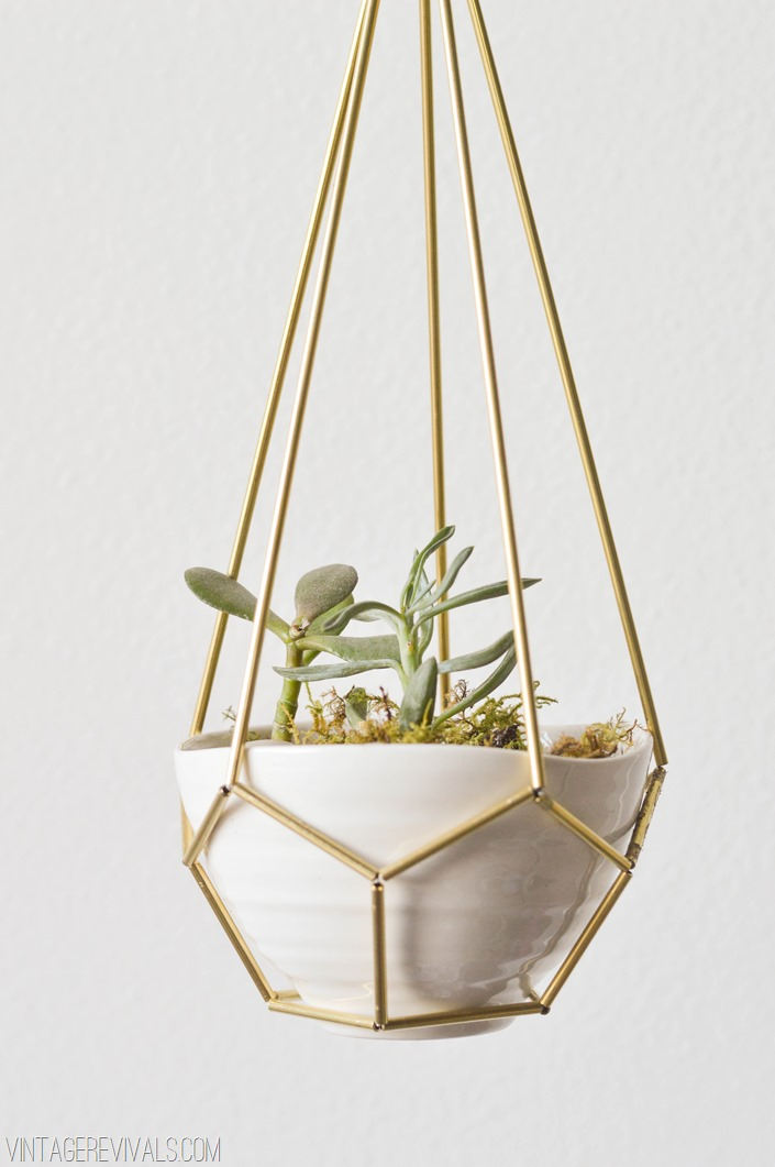 Leather Brass Hanging Planter