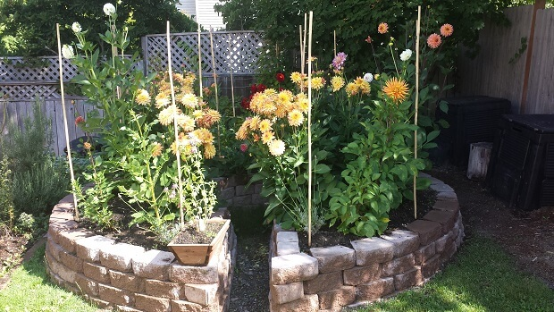 Keyhole Garden Ideas To Make Your Own Keyhole Bed The Self Sufficient Living