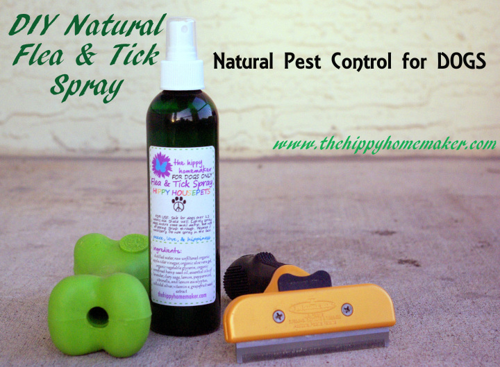 Natural Flea Repellent For Dogs Using Essential Oils