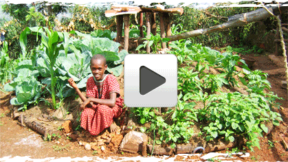 Video Guide On Keyhole Gardening In Africa