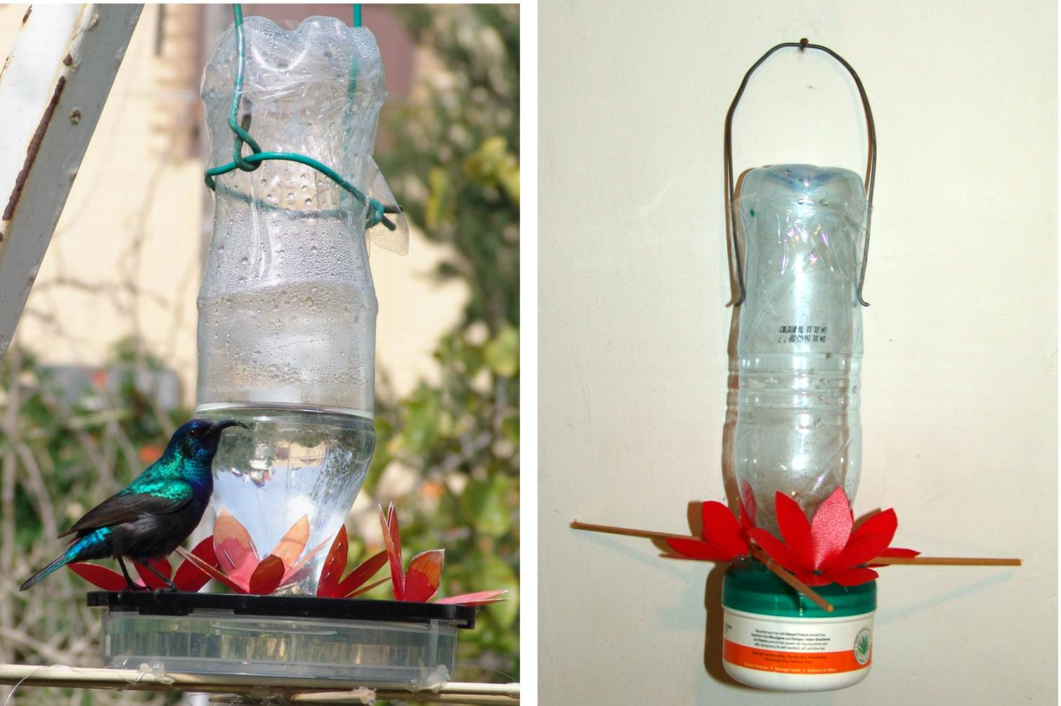 Plastic Box Hummingbird Feeder