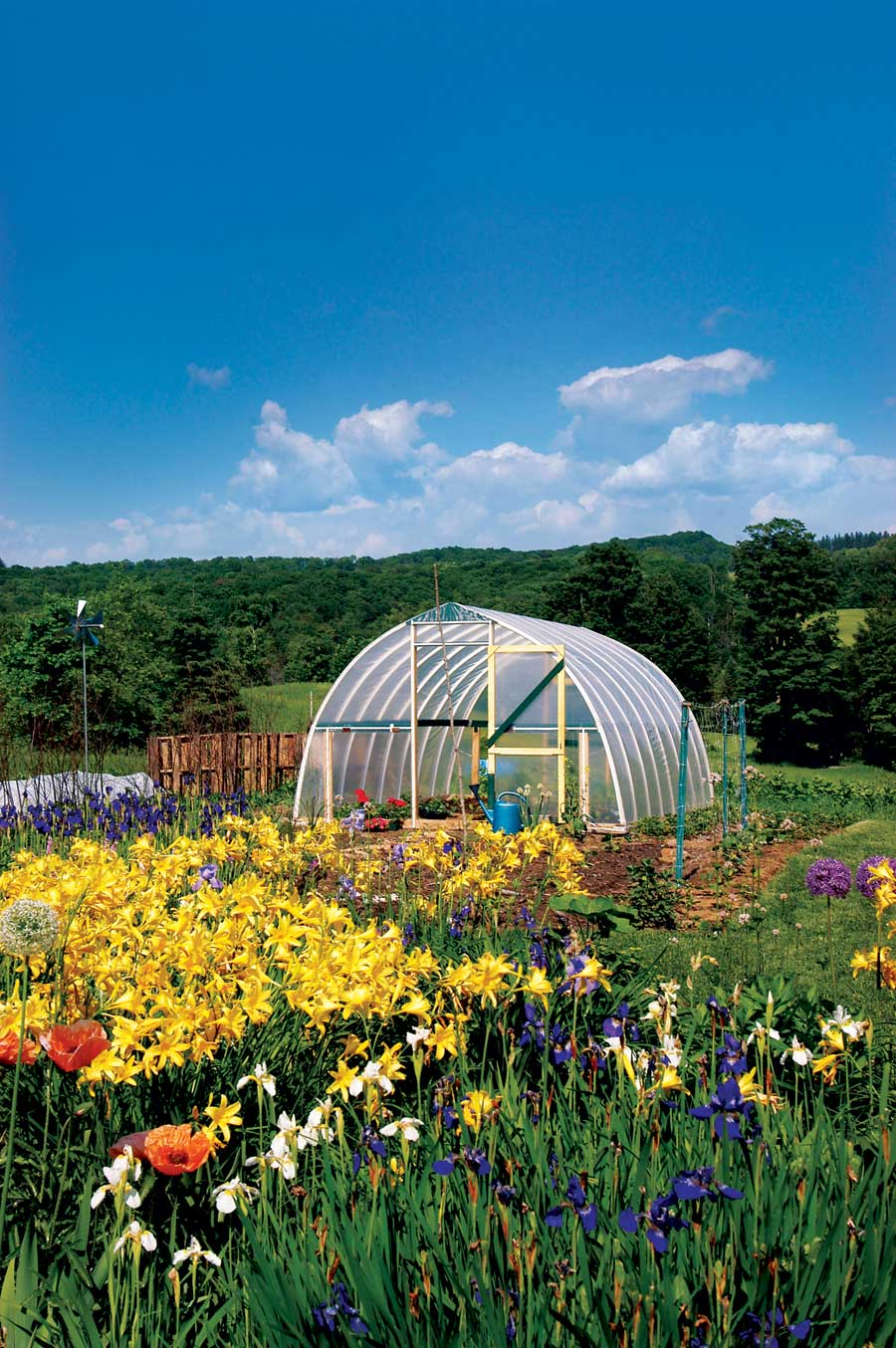 Standard Hoop House Plan