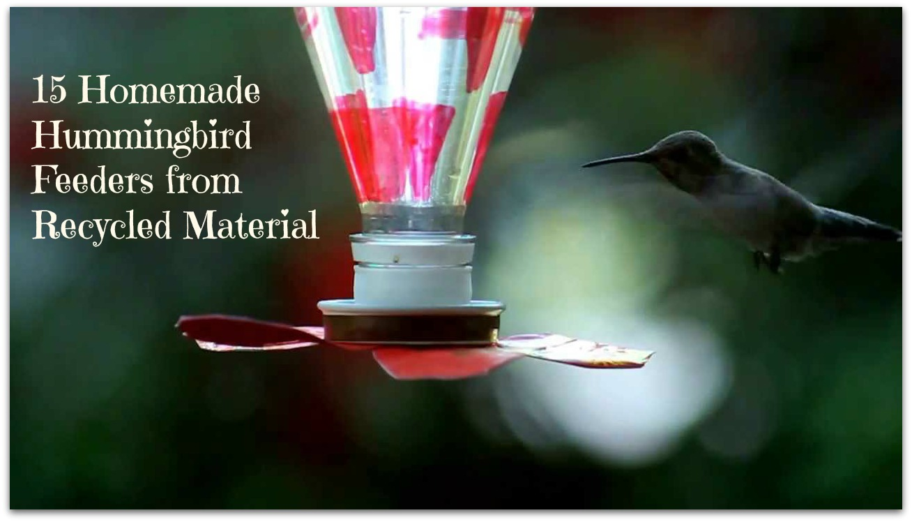 27 Homemade Hummingbird Feeders From Recycled Material The Self