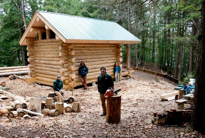 build rustic log cabin