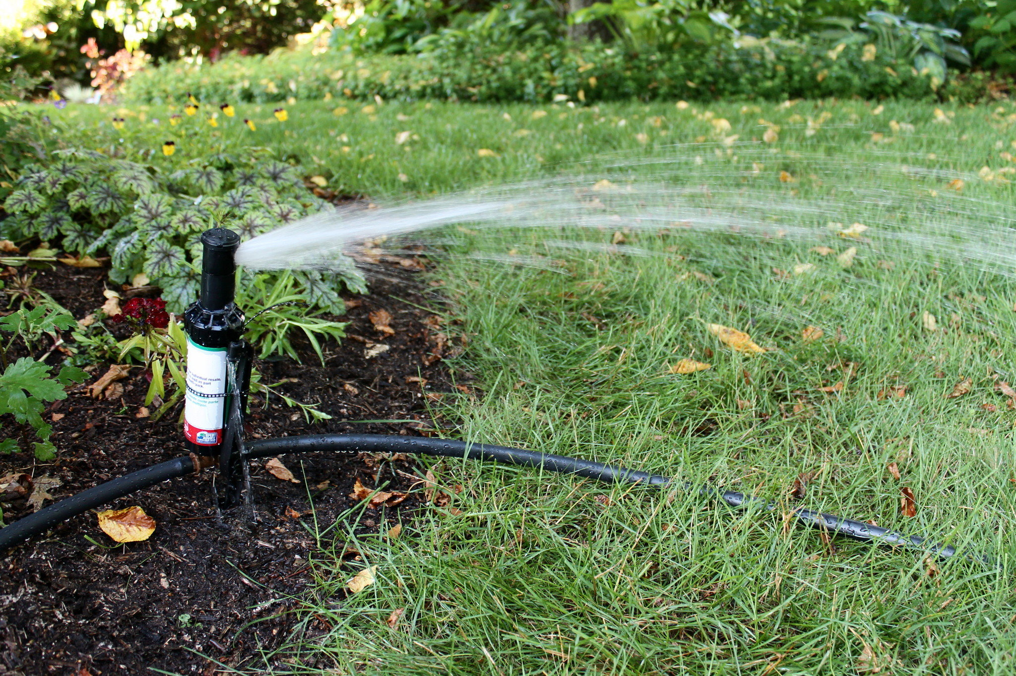 Home Sprinkler Installation