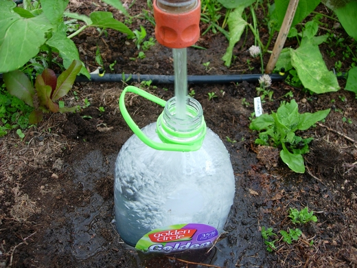 Bottle Drip Irrigation