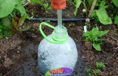 diy drip irrigation