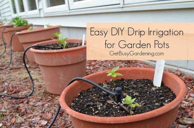 homemade drip irrigation system - How To Design An Irrigation System At Home