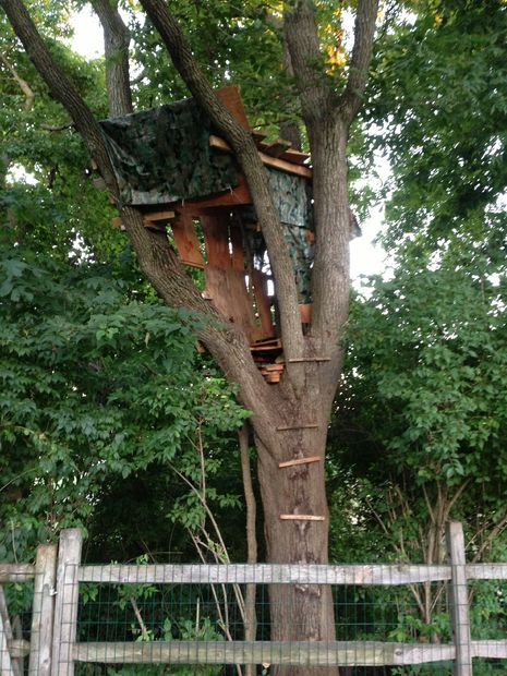 15 Lovely Diy Treehouses Make Your Kids Dream Come True