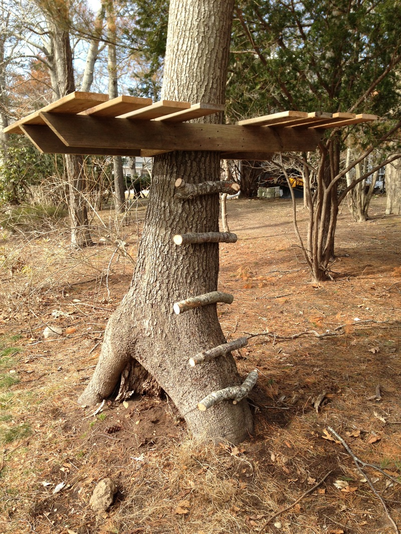 15 Lovely DIY Treehouses-Make Your Kids Dream Come True | The Self ...