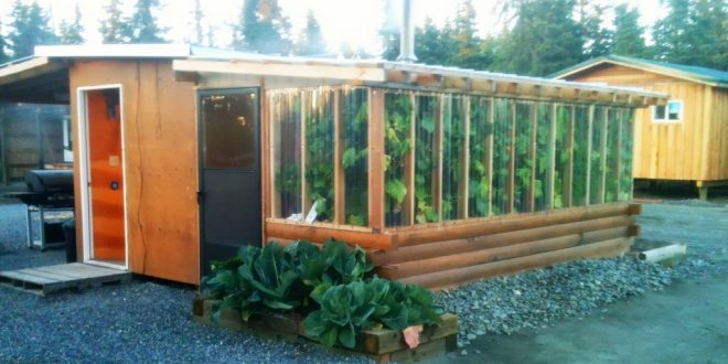 Vegetables To grow In A greenhouse