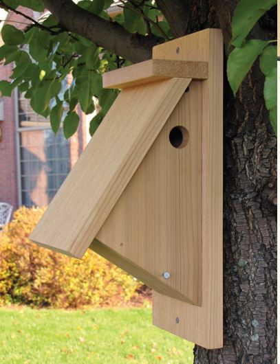 A Chickadee House