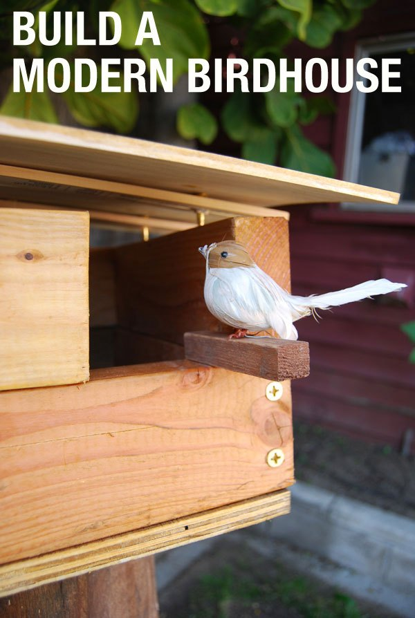 Chic, Modern Birdhouse Plans