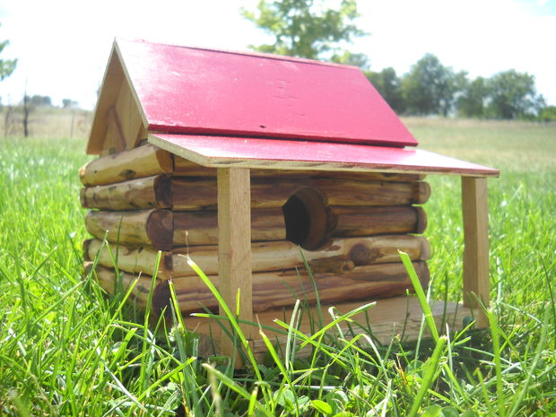 A Little Log Cabin For The Birds