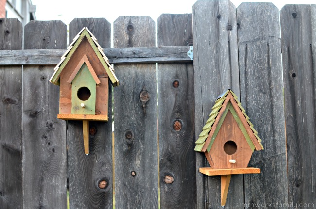 Wooden DIY Birdhouses