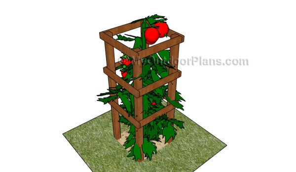 12 DIY Tomato Cages to Help your Plants Grow Vertically – The Self ...
