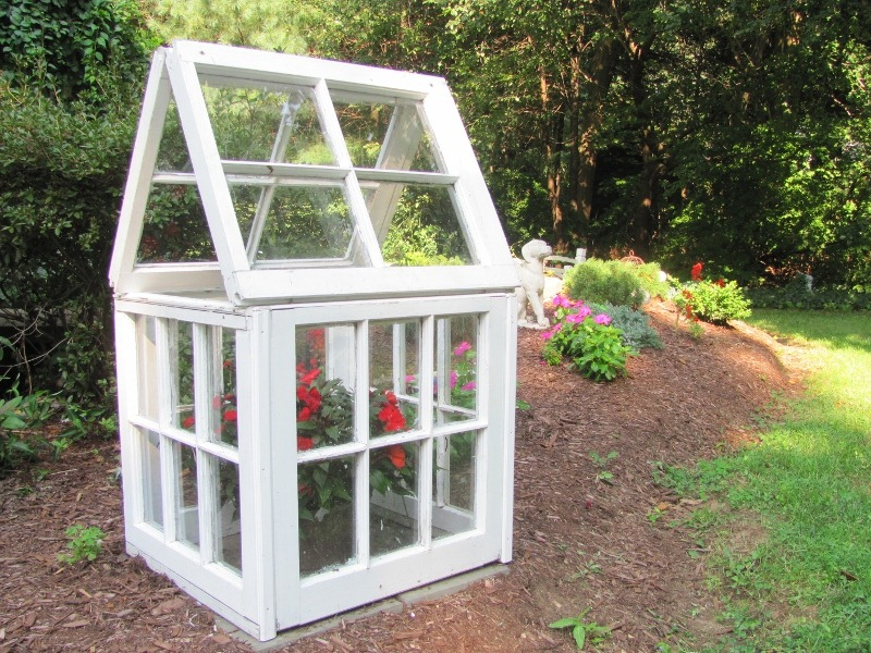 Living in Small Home Greenhouse