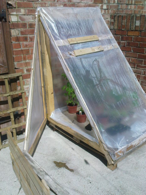 Pallet Greenhouse