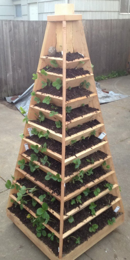 Pyramid Tower Garden