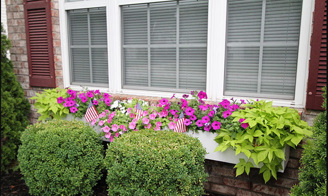 Build And Install A Long Window Box