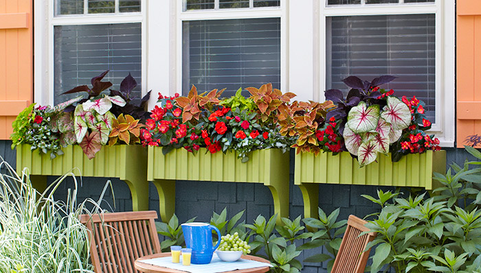 23 Diy Window Box Ideas Build And Fill Them With Colorful Flowers The Self Sufficient Living