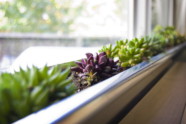 Turn An Aluminum Gutter Into DIY Window Planter