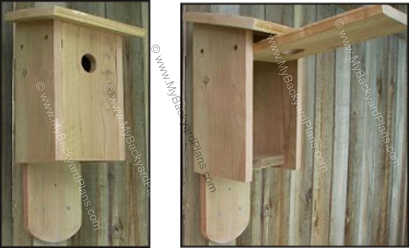 Construct an Easy To Clean Birdhouse