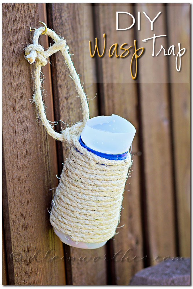 Creamer Bottle Homemade Wasp Trap
