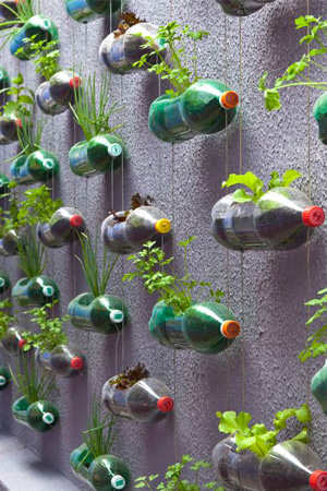 Recycle Soda Bottles Wall Planter