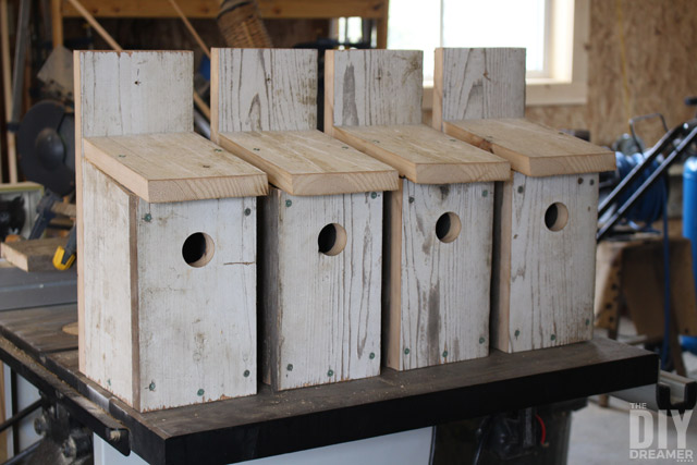 Use One Board To Build A Bluebird House