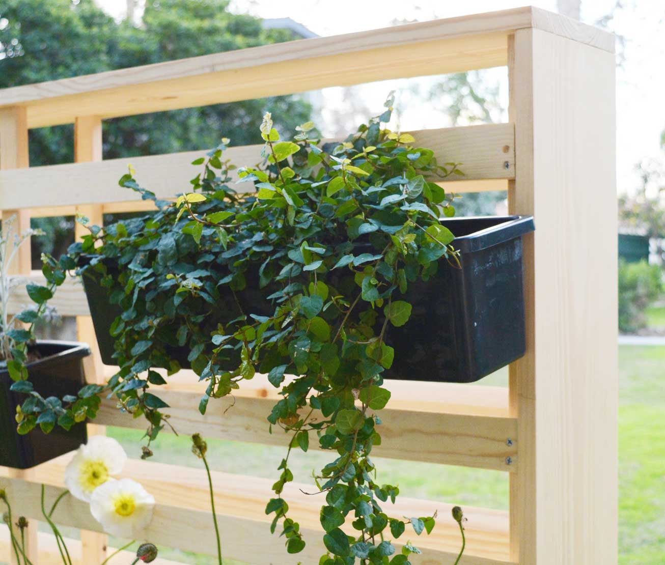 Create Privacy With Living Wall Container