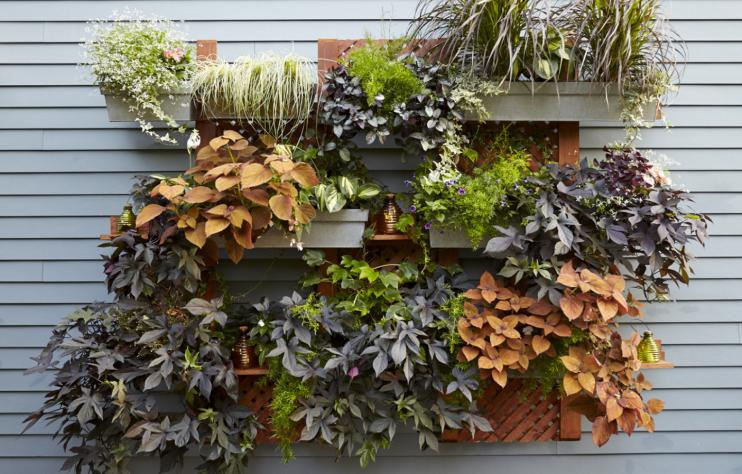 23 Cool Diy Wall Planter Ideas For Vertical Gardens The