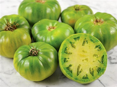 Green Giant Tomatoes