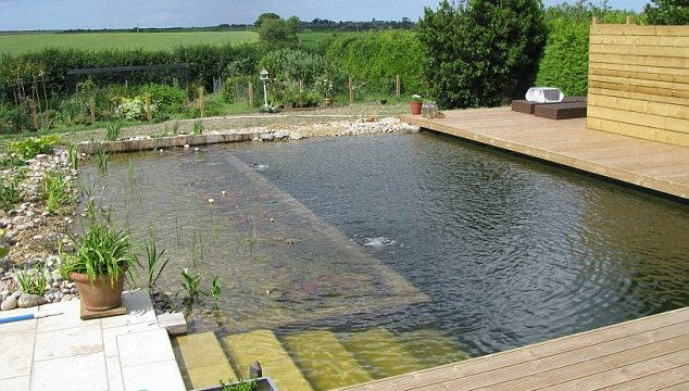 10 diy swimming pool you can build to save thousands of for Self sustaining pool