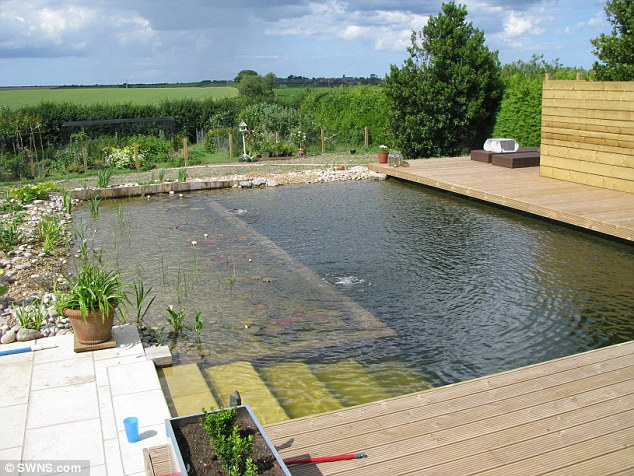 Natural Pond Style Pool