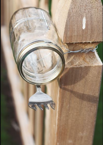 Fork DIY Squirrel Feeder