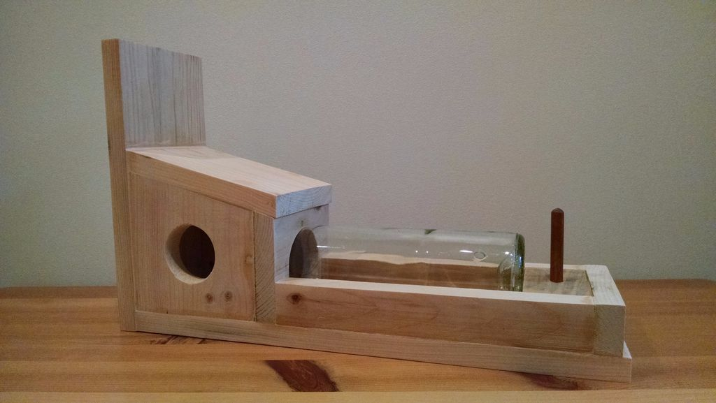 12 Diy Squirrel Feeder Plans For Your Backyard The Self