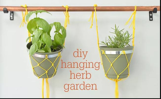 DIY Macramé Indoor Hanging Herb Garden