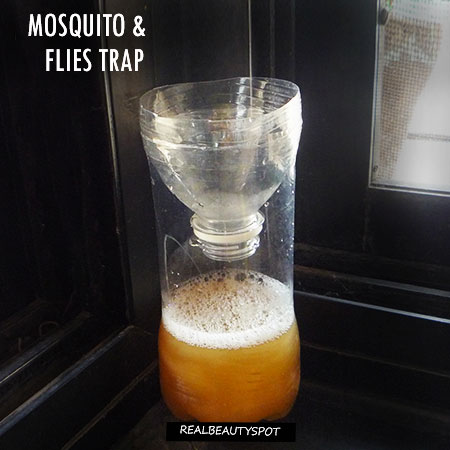 DIY Vinegar Mosquito Trap